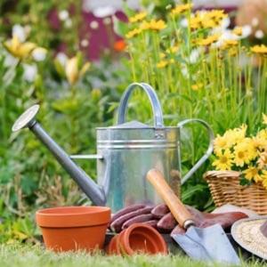 My Garden Plant Podcast