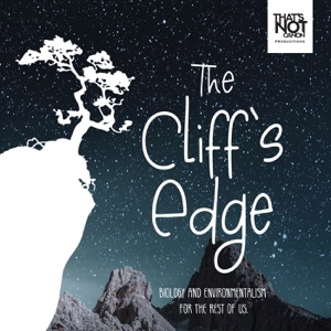 The Cliff's Edge